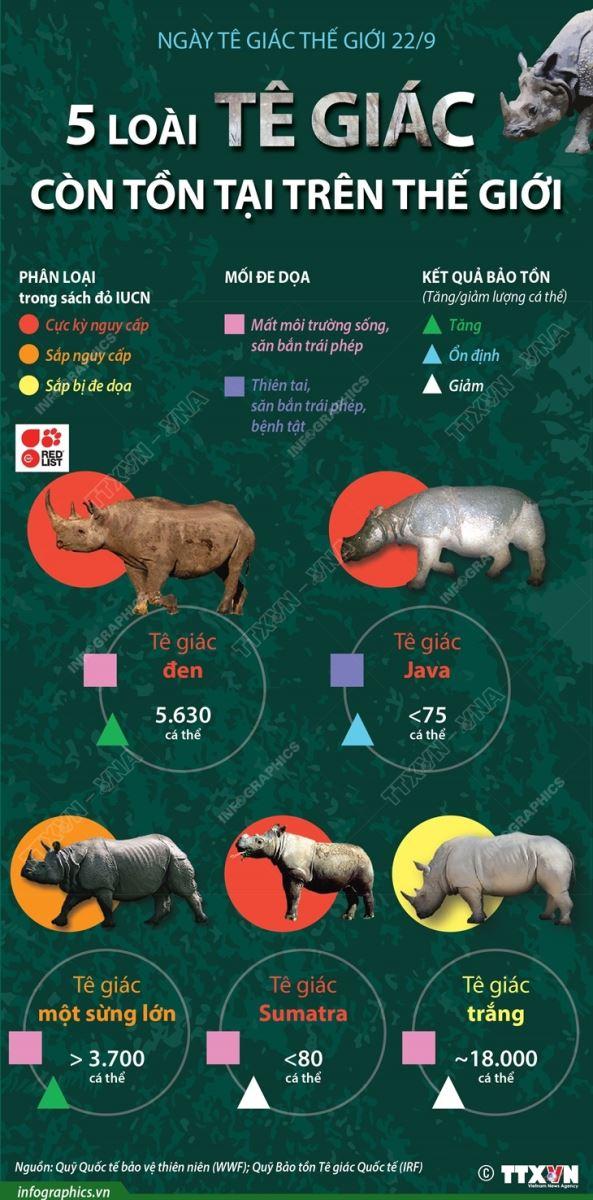Ngày Tê giác thế giới 22/9, 5 loài tê giác còn tồn tại trên thế giới, tê giác, tê giác tuyệt chủng, loài tê giác Sumatra tuyệt chủng nguy cấp, ngày tê giác thế giới
