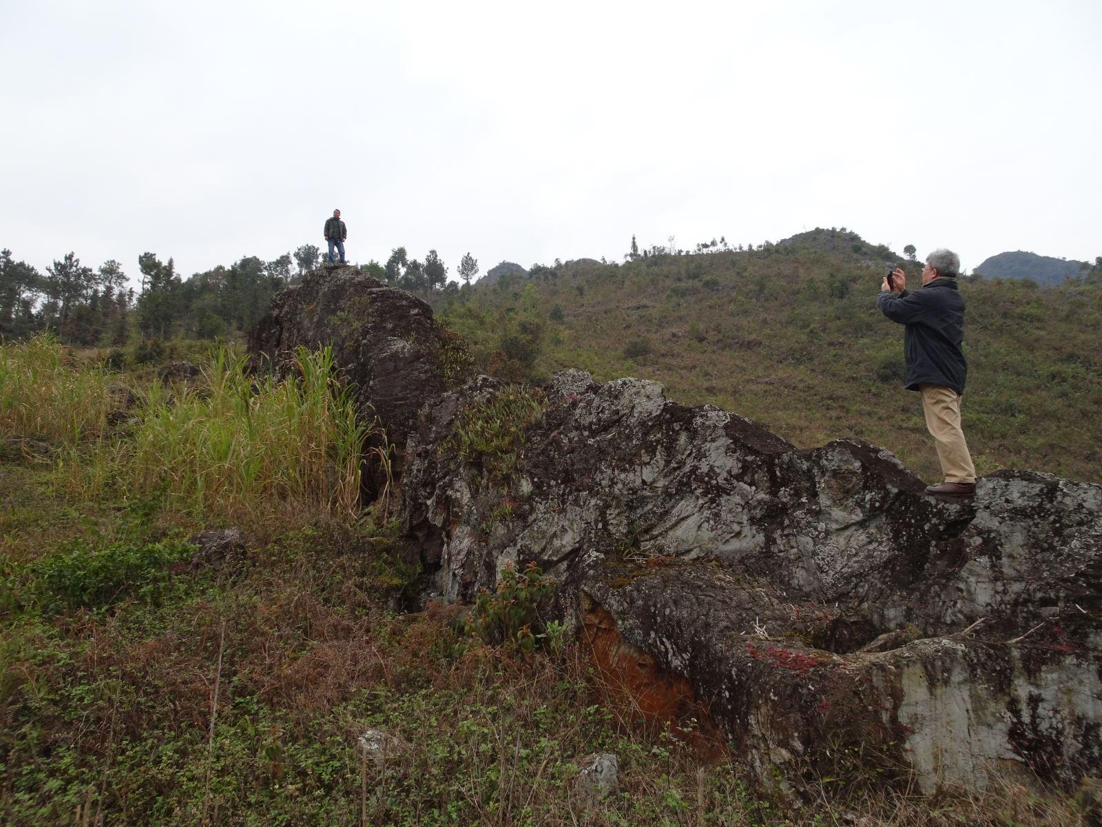 Hình ảnh thiết giao long hóa thạch ở huyện Mèo Vạc – Hà Giang