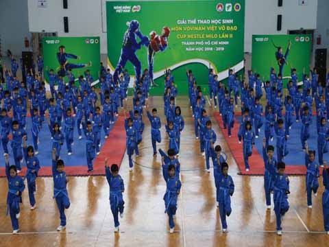 """Vovinam đã có bước tiến lớn khi """"tấn công"""" vào trường học để bảo tồn truyền thống môn võ dân tộc. Ảnh: Hoàng Giang"""