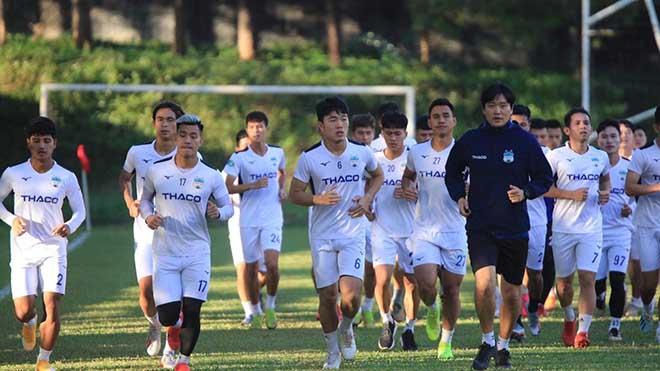 bóng đá Việt Nam, tin tức bóng đá, bong da, tin bong da, HAGL, bầu Đức, V League, chuyển nhượng V League, HLV Kiatisuk, Park Hang Seo, ngọc hải, viettel