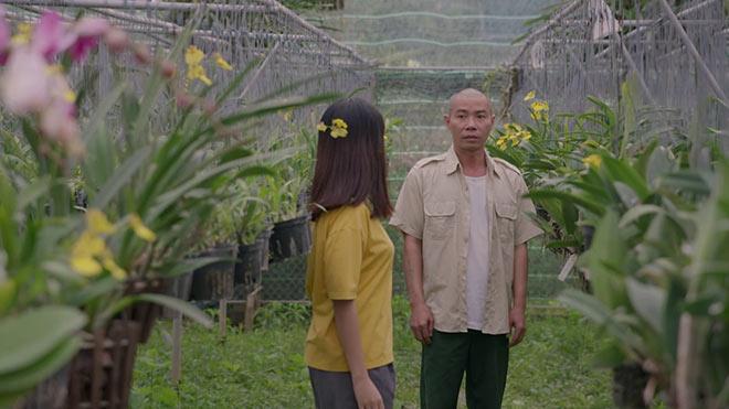 'Những cô gái trong thành phố' tập 31: Lan tỏ tình với Lâm, Tùng và Xuân chưa kết thúc?