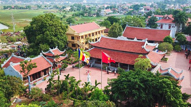 Quảng Ninh: Cây di sản và việc bảo tồn, phát triển du lịch, văn hóa