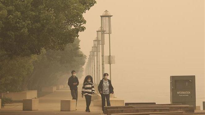 Vì sao lại có nhiều thông tin sai lệch về cháy rừng tại Australia?