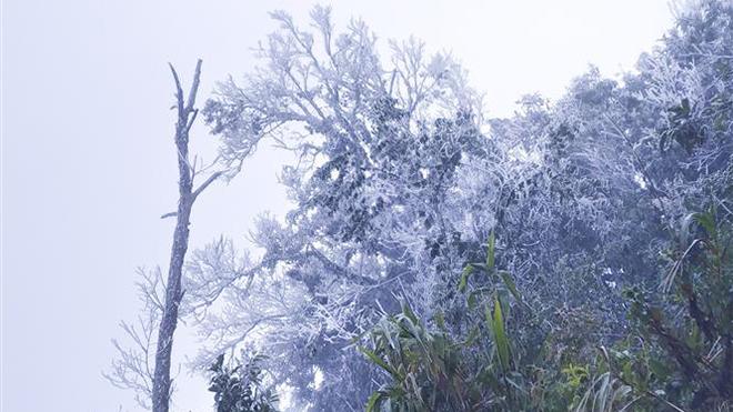Không khí lạnh tăng cường, Bắc Bộ mưa rét, vùng núi cao có nơi dưới 0 độ C