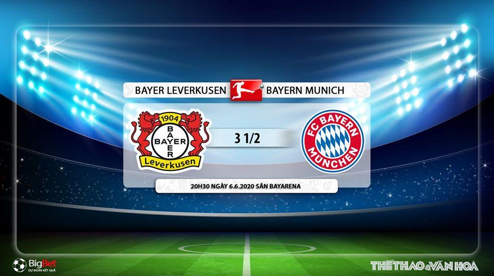Leverkusen vs Bayern Munich, Leverkusen, Bayern Munich, trực tiếp bóng đá, Fox Sport, kèo bóng đá, soi kèo, nhận định