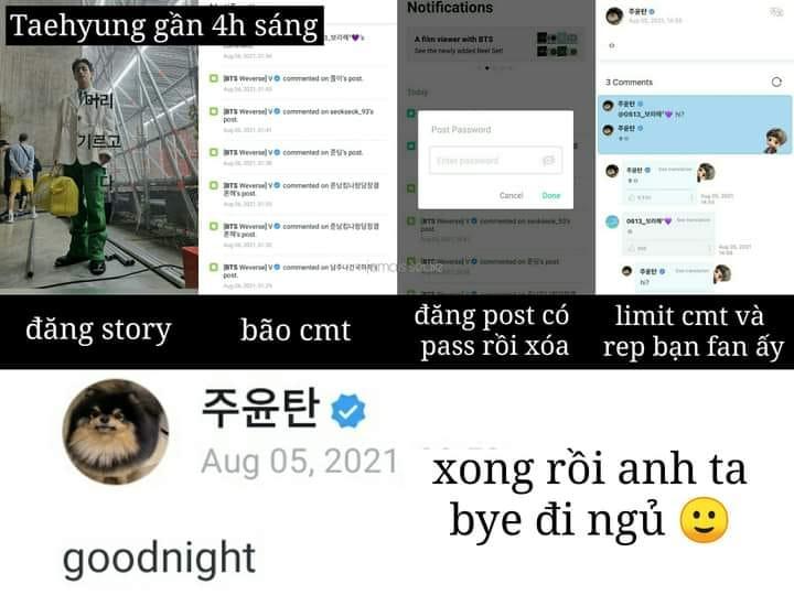 BTS, BTS tin tức, BTS thành viên, Kpop, ARMY, Weverse, V BTS, BTS V, V, Giám đốc tấu hài, BTS idol, BTS profile, BTS Weverse