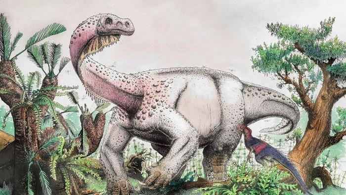 Nam Phi phát hiện hóa thạch của loài khủng long sống cách đây 200 triệu năm