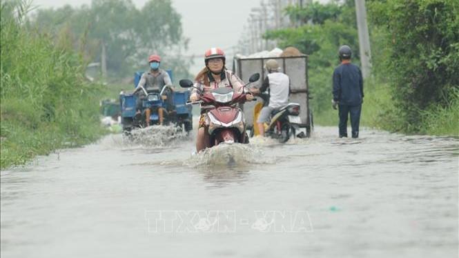 Chùm ảnh: Nhiều tuyến đường tại TP.HCM bị ngập do triều cường lên cao