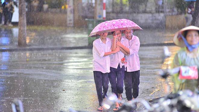 Chùm ảnh: Hà Nội được 'giải nhiệt' nhờ cơn mưa chóng vánh đầu mùa