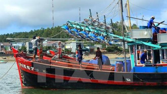 Ứng phó cơn bão số 8: Bình Thuận cấm tàu thuyền ra biển hoạt động