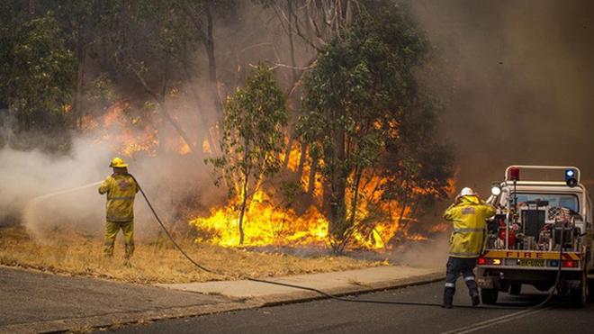 Hàng nghìn lính cứu hỏa khống chế đám cháy lớn do nắng nóng kỷ lụctại Australia