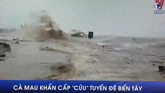 VIDEO: Cà Mau khẩn cấp 'cứu'tuyến đê biển Tây