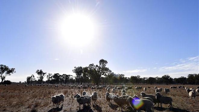Liên Hợp Quốc cảnh báo đây là thập kỷ nóng nhất trong lịch sử