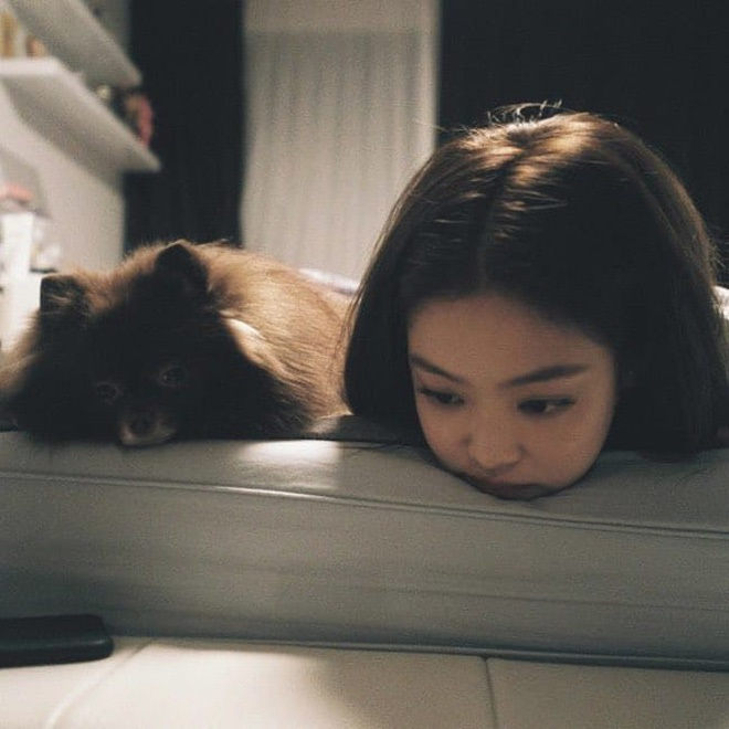 Blackpink, Jennie, Jisoo, Lisa, Rosé, thú cưng của Blackpink, biệt đội pet của blackpink