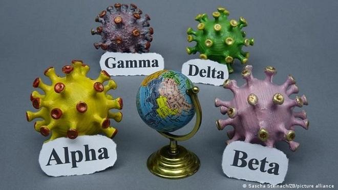 Covid-19, Covid thế giới, biến thể Delta, Delta, các biến thể của virus SARS-CoV-2, WHO, đại dịch Covid, tình hình Covid-19 thế giới