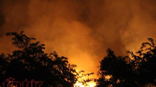TP.HCM: Cháy lớn ven rừng tràm ở huyện Bình Chánh
