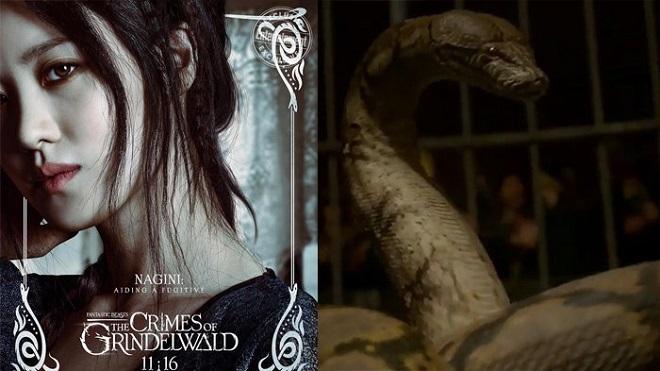 Rowling nói về mỹ nhân châu Á hóa rắn trong 'Sinh vật huyền bí 2'