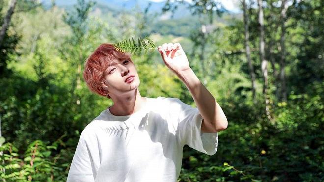 Út vàng Jungkook của BTS được bình chọn là Người đàn ông đẹp trai nhất Hàn Quốc