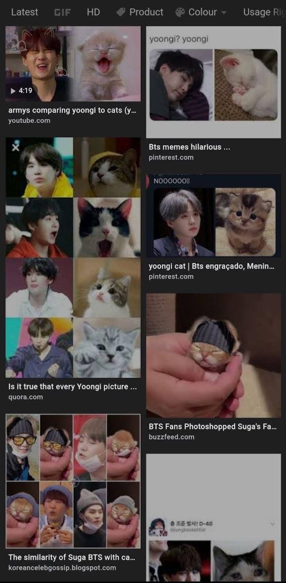 bts, jin, jimin, jungkook, j-hope, rm, suga, v, sốc trước lý do suga không nuôi mèo, suga dị ứng mèo, bí mật của suga, sốc trước bí mật suga, suga with cats, suga với mèo