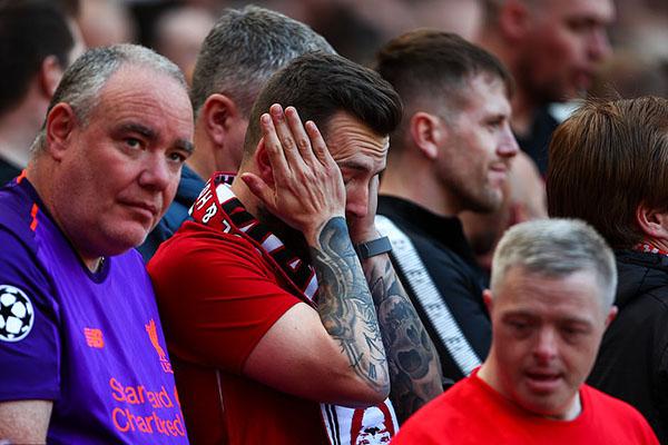 Liverpool vs Wolves, video Liverpool 2-0 Wolves, Brighton vs Man City, video Brighton vs Man City, Liverpool vs Tottenham, Liverpool, Man City, chung kết cúp C1, Cúp C1