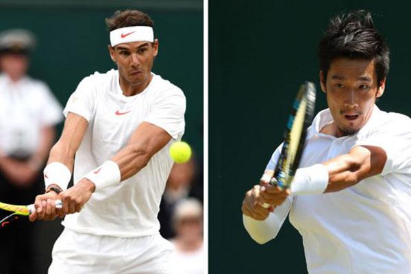 Kết quả Wimbledon 2019, Wimbledon 2019, kết quả đơn nam, kết quả đơn nữ, kết quả quần vợt, ket qua quan vot, kết quả Federer vs Harris, kết quả Nadal vs Sugita, Sharapova