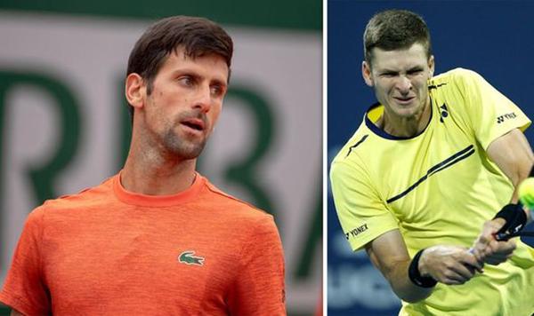 Lịch thi đấu Wimbledon 2019, lịch thi đấu đơn nam, lịch thi đấu đơn nữ, trực tiếp, truc tiep quan vot, trực tiếp Djokovic vs Hurkacz, trực tiếp Djokovic, Wimbledon 2019
