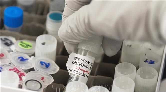 Mỹ thử nghiệm ít nhất 14 loại vaccine phòng virus SARS-CoV-2, đóng cửa bệnh viện dã chiến tại bang New York