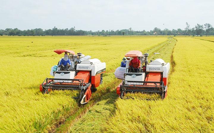 Dịch Covid-19: '3 trong 1'hỗ trợ nông dân