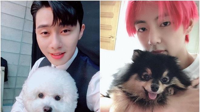 Ảnh triệu 'like': Trai đẹp V (BTS) và Park Seo Joon rủ nhau đưa cún cưng đi chơi
