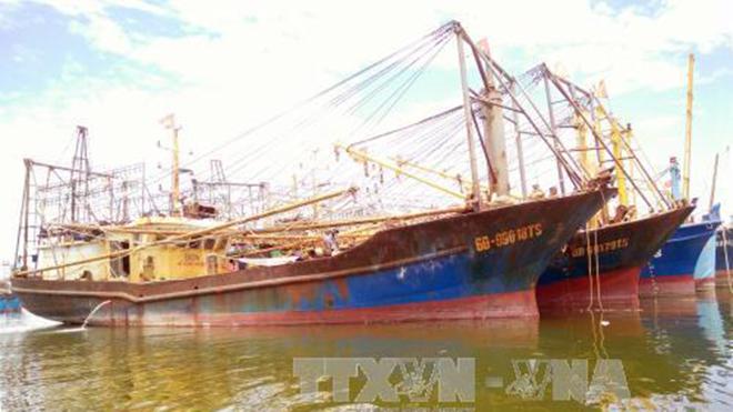 Thủ tướng giao Bộ Công an điều tra vụ tàu vỏ thép ở Bình Định