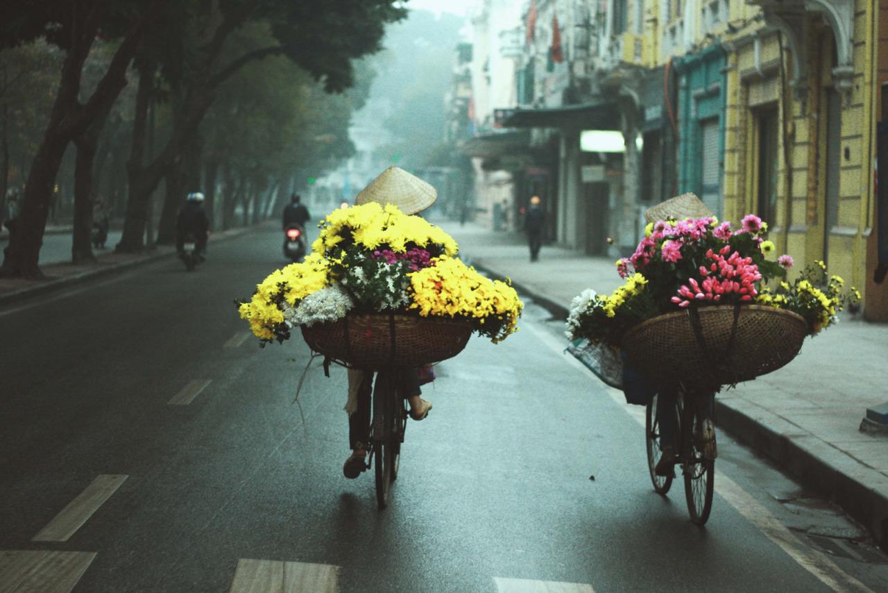 Không khí lạnh, Gió mùa Đông Bắc, Dự báo thời tiết, Thời tiết