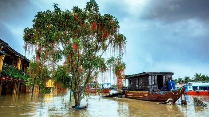 Bão số 6, Tin bão số 6, Cơn bão số 6, bão số 6 năm 2018, Siêu bão Mangkhut, Bão MangKhut, tin bão khẩn cấp, tin bão, tin bão mới nhất, bão mới nhất, dự báo thời tiết, bão
