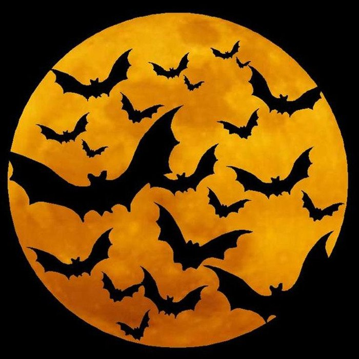 Halloween là gì, Halloween, Ngày Halloween, Nguồn gốc Halloween, Halloween ngày mấy, lễ Halloween, lễ hội Halloween, Halloween, biểu tượng Halloween, Halloween 2020