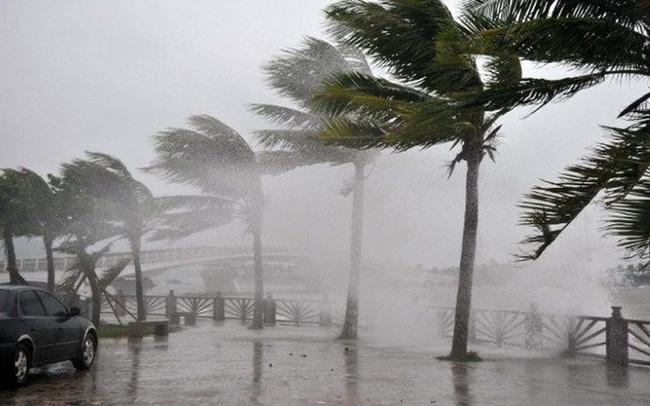 Bão số 8, bắt đầu từ đêm 17/1 các tỉnh ven biển Nam Trung Bộ đến Nam Bộ mưa rất to