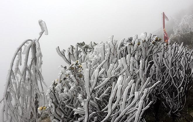 Dự báo thời tiết, Nhiệt độ Sapa, Thời tiết Sapa, Không khí lạnh, Bão số 10, tin thời tiết, nhiệt độ, gió mùa đông bắc, băng tuyết, thời tiết Fansipan, nhiệt độ Fansipan