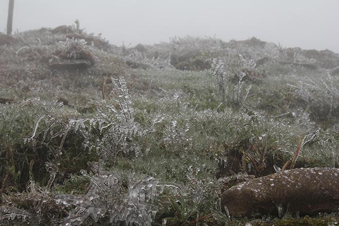 Dự báo thời tiết, Nhiệt độ Mẫu Sơn, Thời tiết Mẫu Sơn, Đỉnh Mẫu Sơn, Băng tuyết, Mẫu Sơn, Nhiệt độ, Không khí lạnh, Lạng Sơn, rét đậm, rét hại, băng giá, thời tiết
