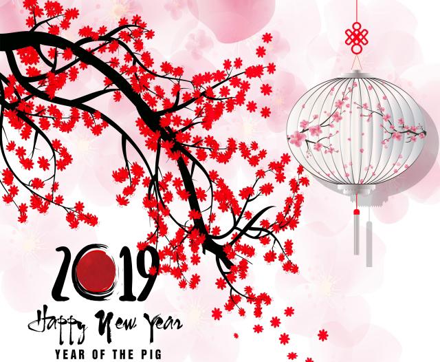 Tết Kỷ Hợi, Tet Ky Hoi, Chúc mừng năm mới, Chúc mừng năm mới 2019, Chúc Tết 2019, chúc tết kỷ hợi, lời chúc mừng năm mới 2019, lời chúc tết 2019, chúc tết hay, chúc tết