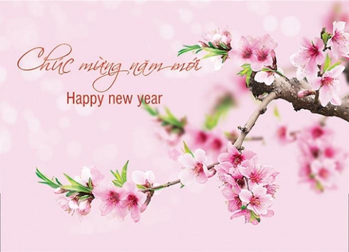 thiệp chúc mừng năm mới 2019, Thiệp chúc mừng năm mới, Thiệp tết đẹp, Thiệp chúc tết đẹp, thiệp tết 2019, thiệp tết đẹp 2019, thiệp chúc tết 2019, chúc mừng năm mới