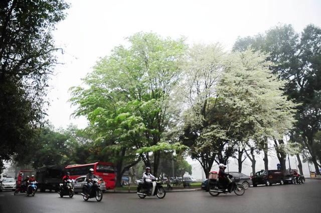 Không khí lạnh, miền Bắc mưa rét, Hà Nội lạnh 16 độ C, vùng núi đề phòng thời tiết nguy hiểm