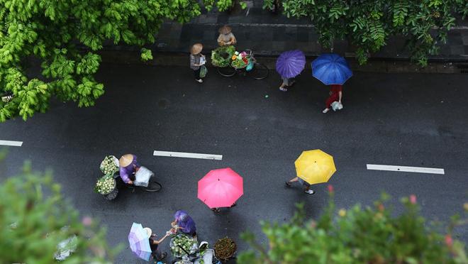 Dự báo thời tiết, Tin bão mới nhất, Tin bão, Bão số 5, BÃO SỐ 5, Thời tiết, tin thời tiết, tin bão sô 5, áp thấp nhiệt đới, cơn bão số 5, dự báo bão, du bao thoi tiet