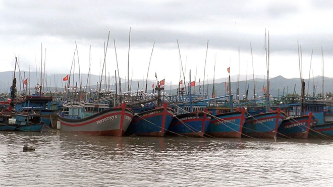 Dự báo thời tiết: Áp thấp nhiệt đới mạnh thành bão, không khí lạnh gây mưa to ở Trung Bộ
