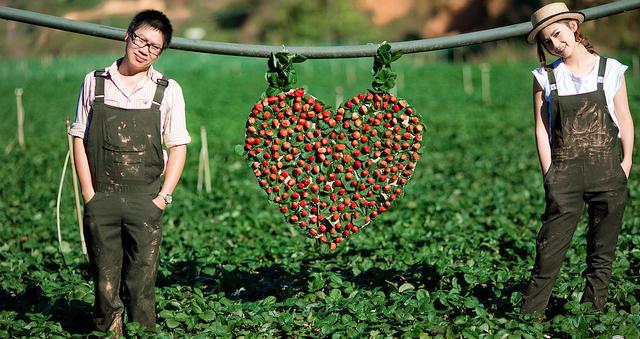 Quà Valentine, Quà Valentine 2020, Quà tặng Valentine, Valentine tặng gì, quà 14/2, quà tặng 14/2, quà tặng lễ tình nhân 2020, quà valentine, quà valentine 2020