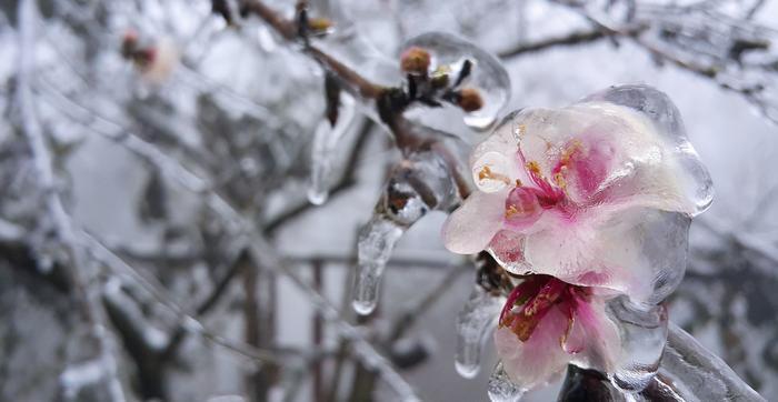 Nhiệt độ hôm nay, Nhiệt độ, Dự báo thời tiết, Thời tiết hôm nay, Thời tiết, dự báo thời tiết hôm nay, nhiệt độ hà nội, nhiệt độ hà nội hôm nay, hôm nay có được nghỉ học